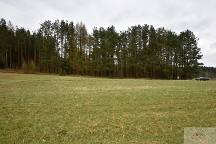 Działka na sprzedaż, Ostródzki, 3000 m² | Morizon.pl | 2666