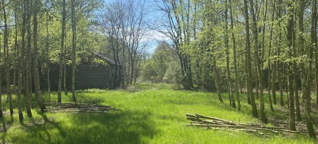 Działka na sprzedaż 3362 m² Radziejowski Topólka Kamieńczyk - zdjęcie 2