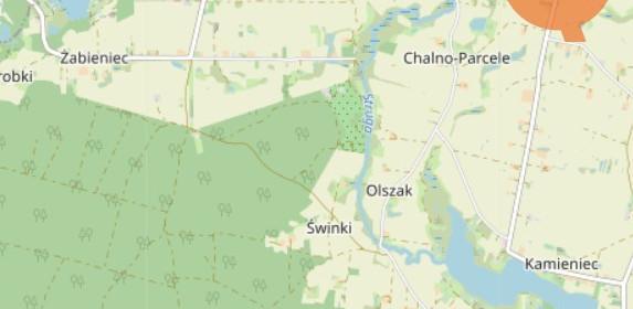 Działka na sprzedaż 3362 m² Radziejowski Topólka Kamieńczyk - zdjęcie 1