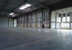 Magazyn do wynajęcia, Kowale Gdańsk Kowale, 4000 m² | Morizon.pl | 0337 nr2