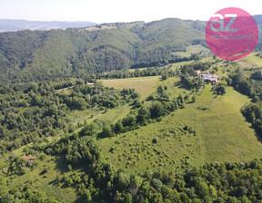 Działka na sprzedaż, Zarzecze, 9200 m²