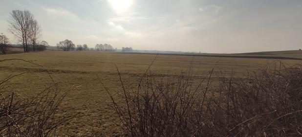 Działka na sprzedaż 12232 m² Myszkowski (pow.) Koziegłowy (gm.) Pińczyce - zdjęcie 1