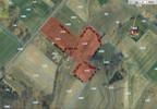 Działka na sprzedaż, Letnica, 16546 m² | Morizon.pl | 0329 nr10