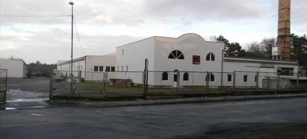 Fabryka, zakład na sprzedaż 5000 m² Krośnieński Gubin - zdjęcie 1