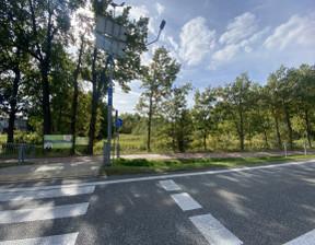 Działka na sprzedaż, Brzeziny, 3973 m²