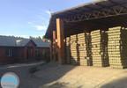 Fabryka, zakład na sprzedaż, Czarnocin, 7500 m² | Morizon.pl | 1939 nr3