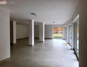Komercyjne na sprzedaż, Kraków Prądnik Czerwony, 478 m²