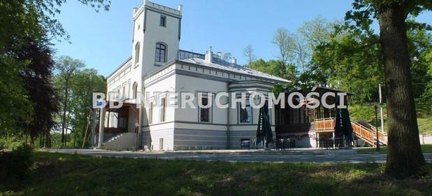 Hotel, pensjonat na sprzedaż 1303 m² Kędzierzyńsko-Kozielski Pawłowiczki Grudynia Wielka - zdjęcie 1