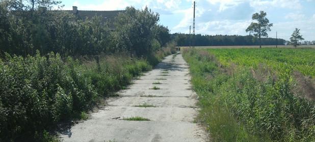 Działka na sprzedaż 14700 m² Opolski (pow.) Chrząstowice (gm.) Dąbrowice Wiejska 63 - zdjęcie 2