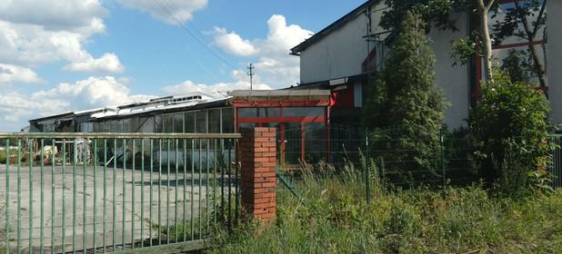 Działka na sprzedaż 14700 m² Opolski (pow.) Chrząstowice (gm.) Dąbrowice Wiejska 63 - zdjęcie 1