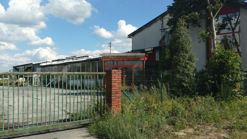 Działka na sprzedaż, Dąbrowice Wiejska 63, 14700 m² | Morizon.pl | 5930
