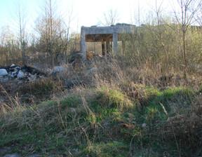 Działka na sprzedaż, Kamienica Polska, 25748 m²