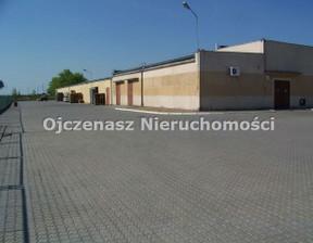 Magazyn, hala na sprzedaż, Inowrocław, 4614 m²