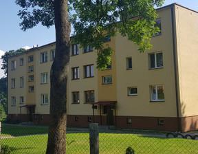 Mieszkanie na sprzedaż, Tarnawatka-Tartak, 56 m²