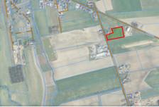 Działka na sprzedaż, Sędzinko Bukowska, 10693 m²