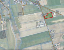 Morizon WP ogłoszenia | Działka na sprzedaż, Sędzinko Bukowska, 10693 m² | 5147