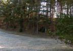 Działka na sprzedaż, Tuchomie, 12400 m²   Morizon.pl   1135 nr5