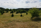 Działka na sprzedaż, Kolsk Kolsk, 21800 m²   Morizon.pl   3465 nr8