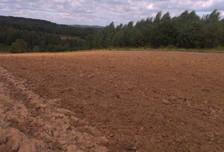 Działka na sprzedaż, Czułów, 3000 m²