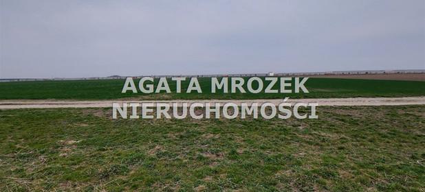Działka na sprzedaż 3800 m² Wrocławski Długołęka Januszkowice - zdjęcie 3