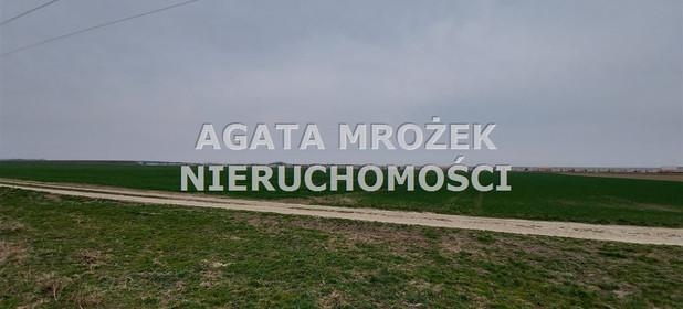 Działka na sprzedaż 3800 m² Wrocławski Długołęka Januszkowice - zdjęcie 1