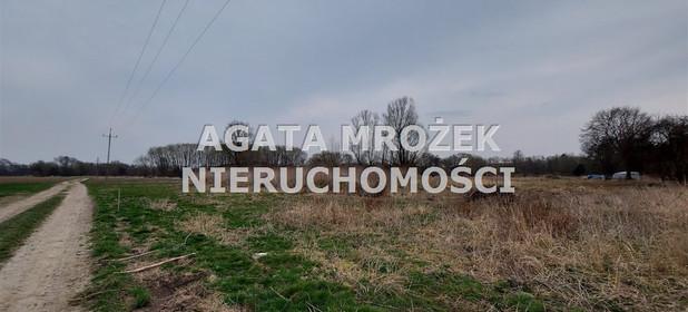 Działka na sprzedaż 3800 m² Wrocławski Długołęka Januszkowice - zdjęcie 2