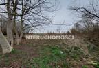 Działka na sprzedaż, Januszkowice, 3800 m² | Morizon.pl | 0394 nr8