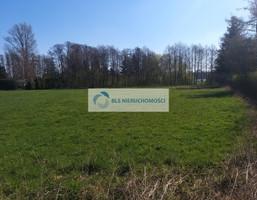 Morizon WP ogłoszenia   Działka na sprzedaż, Karniewek, 5200 m²   8888