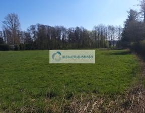 Działka na sprzedaż, Karniewek, 5200 m²