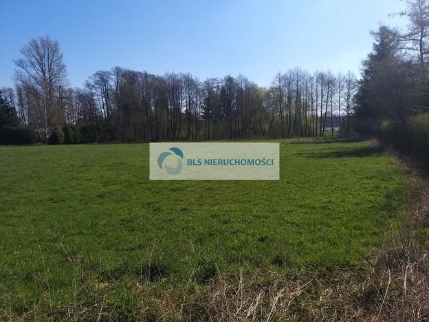 Morizon WP ogłoszenia | Działka na sprzedaż, Karniewek, 5200 m² | 8888