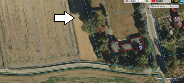 Działka na sprzedaż 4010 m² Świecki (Pow.) Nowe (Gm.) Tryl - zdjęcie 2