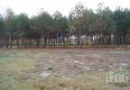 Działka na sprzedaż, Waleriany, 1307 m² | Morizon.pl | 8988 nr5