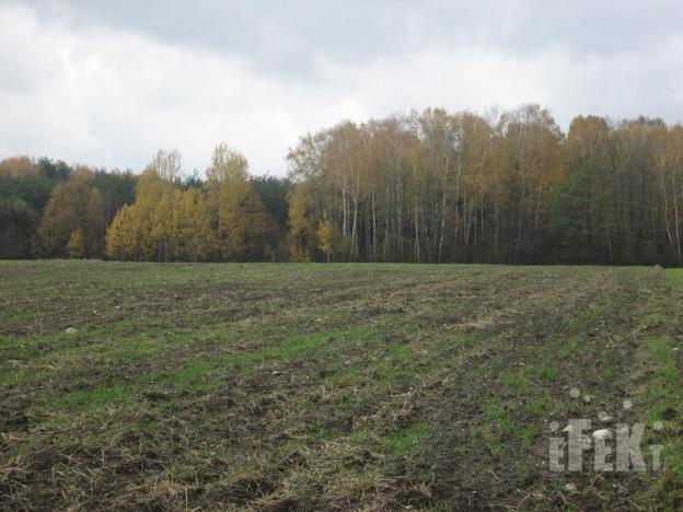 Działka na sprzedaż, Lindów, 32000 m²   Morizon.pl   0381