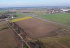 Działka na sprzedaż, Bolechowo Obornicka, 6461 m² | Morizon.pl | 0745 nr2