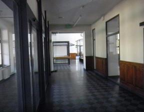 Lokal użytkowy do wynajęcia, Piotrków Trybunalski, 49 m²