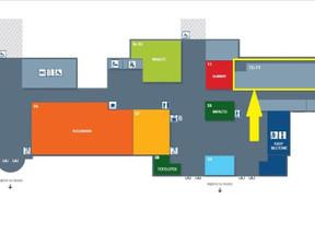 Lokal użytkowy do wynajęcia, Gliwice, 151 m²