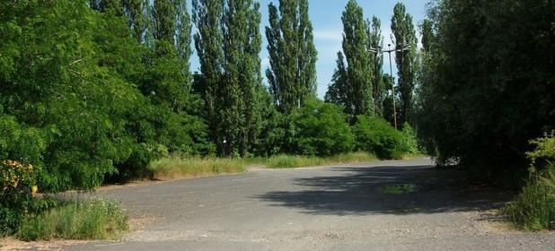 Inny obiekt do wynajęcia 250 m² Bielsko-Biała Podwale - zdjęcie 1