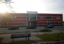 Magazyn, hala do wynajęcia, Działdowo, 176 m²