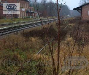 Działka do wynajęcia 4467 m² Giżycki (pow.) Ryn (gm.) Sterławki Wielkie - zdjęcie 1