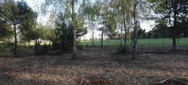 Działka na sprzedaż 800 m² Słupecki (pow.) Ostrowite (gm.) Skrzynka Wielka - zdjęcie 1