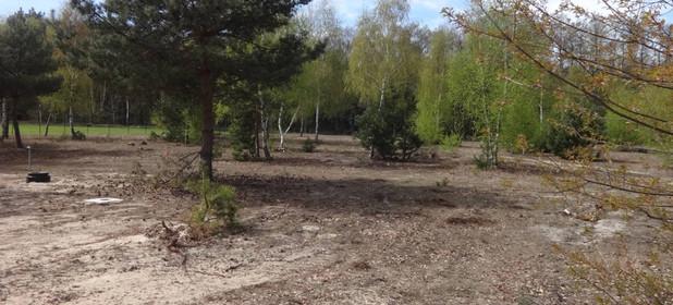 Działka na sprzedaż 800 m² Słupecki (pow.) Ostrowite (gm.) Skrzynka Wielka - zdjęcie 2