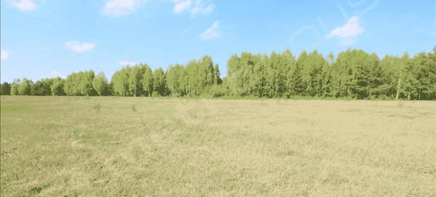 Działka na sprzedaż 1232 m² Łaski (Pow.) Wodzierady (Gm.) Wodzierady - zdjęcie 3