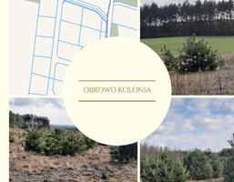 Morizon WP ogłoszenia | Działka na sprzedaż, Obrowo, 994 m² | 9077