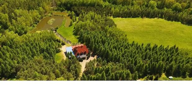 Lokal usługowy do wynajęcia 612 m² Ostródzki Ostróda Ostrowin - zdjęcie 3