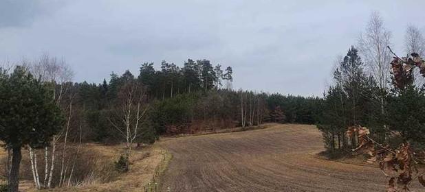 Działka na sprzedaż 1221 m² Bytowski Studzienice - zdjęcie 3