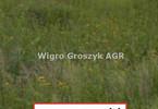 Morizon WP ogłoszenia | Działka na sprzedaż, Sowia Wola, 6500 m² | 5111