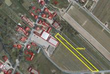 Działka na sprzedaż, Przęsławice, 4000 m²
