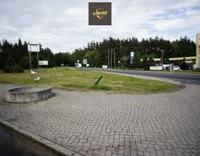 Działka na sprzedaż, Nowa Wieś Ełcka, 10289 m²
