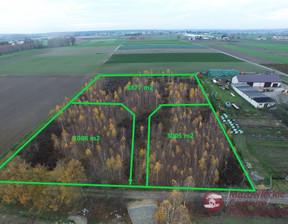 Działka na sprzedaż, Mochty-Smok, 3005 m²