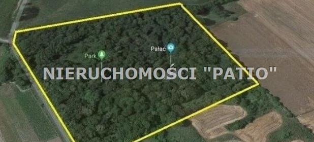 Działka na sprzedaż 93500 m² Słupecki Zagórów Łukom - zdjęcie 2